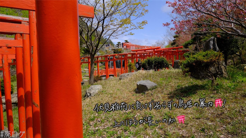 f:id:hiyapa:20210606213251j:image