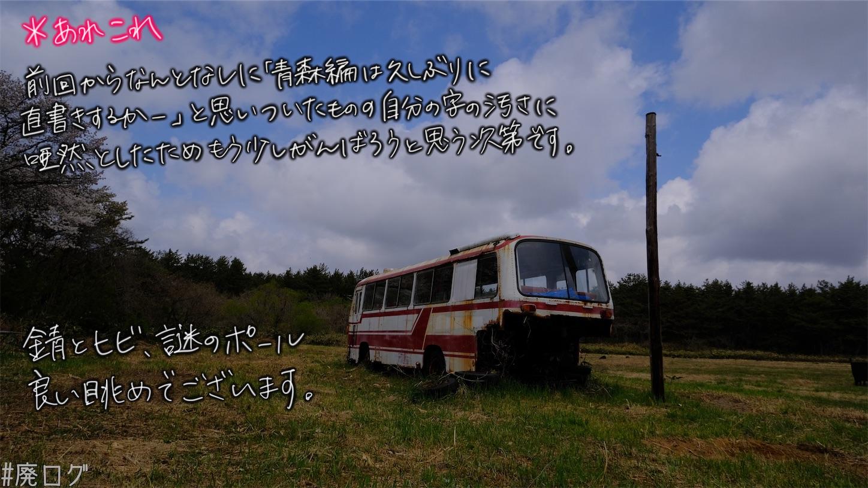 f:id:hiyapa:20210606224345j:image