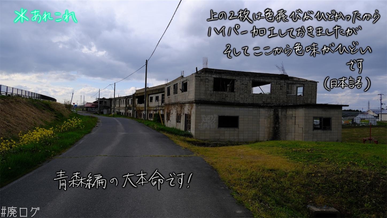 f:id:hiyapa:20210609213546j:image