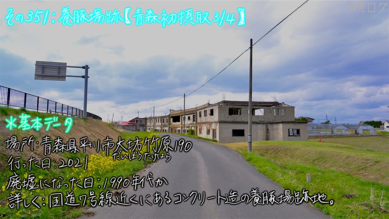 f:id:hiyapa:20210609213617j:image