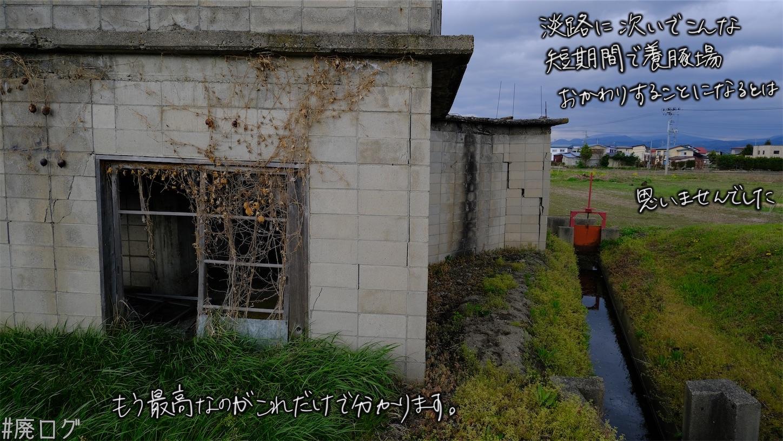 f:id:hiyapa:20210609215421j:image