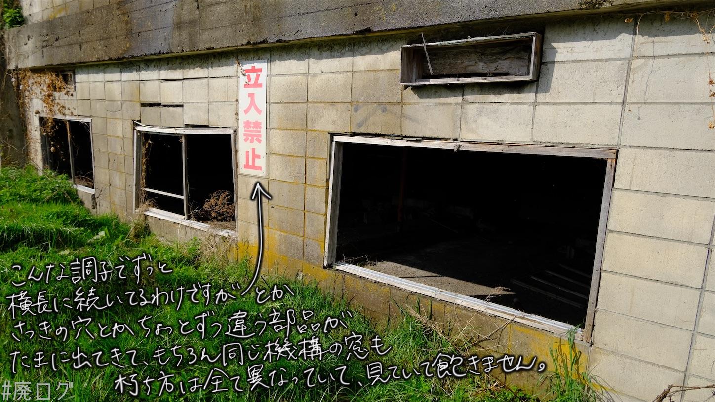 f:id:hiyapa:20210610225449j:image