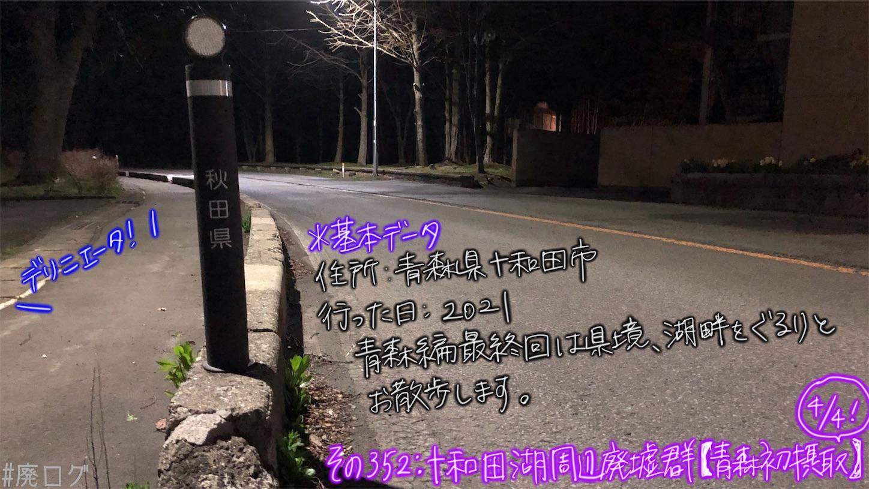 f:id:hiyapa:20210613172649j:image