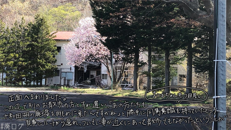 f:id:hiyapa:20210613174501j:image
