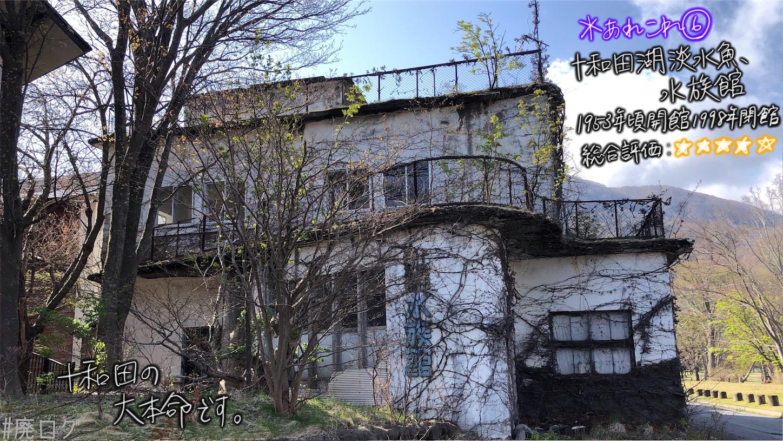 f:id:hiyapa:20210613180118j:image