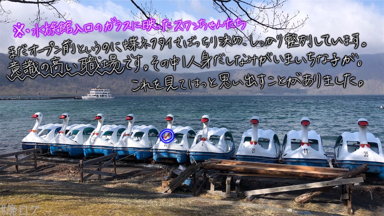 f:id:hiyapa:20210613183250j:image