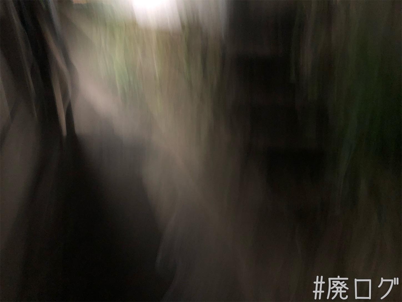 f:id:hiyapa:20210616081743j:image