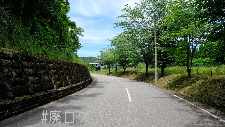 f:id:hiyapa:20210704124718j:image
