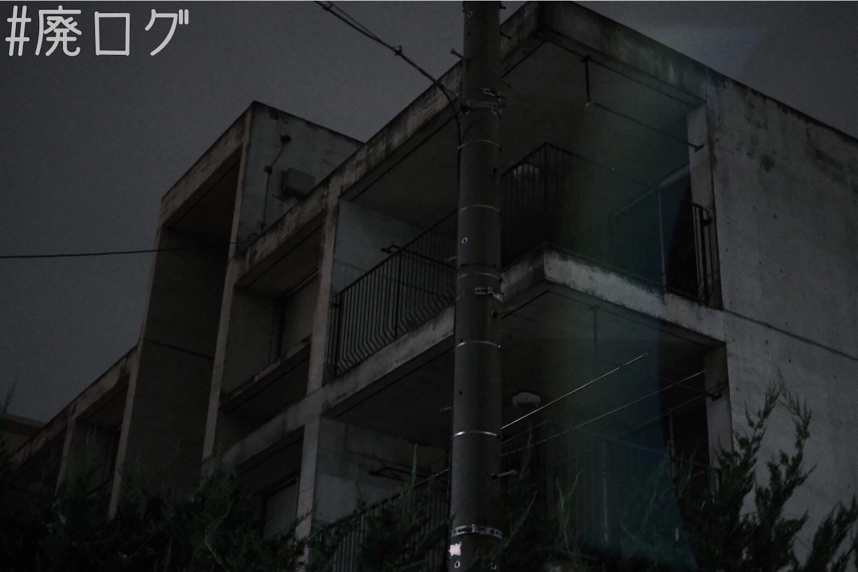 f:id:hiyapa:20210706230710j:image
