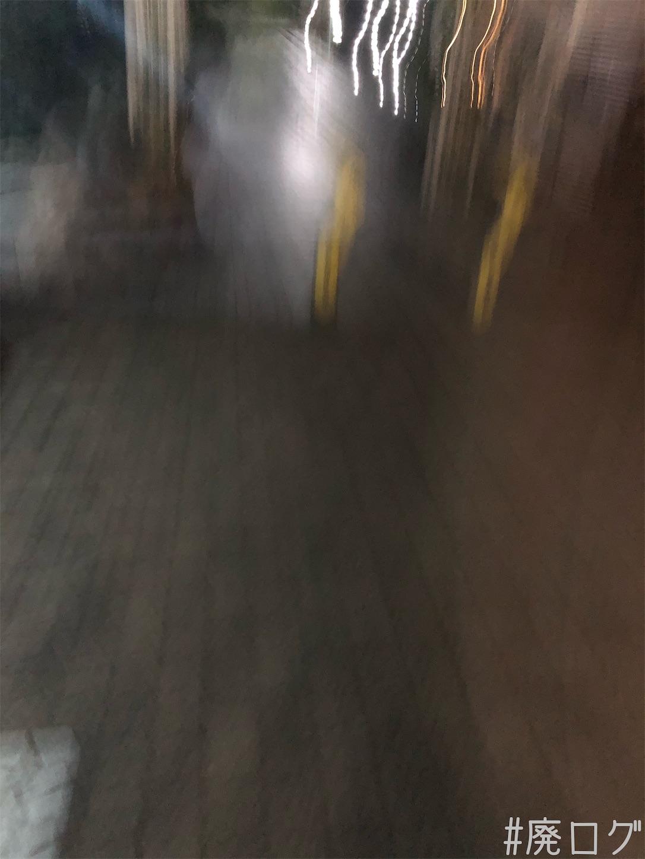 f:id:hiyapa:20210708193948j:image