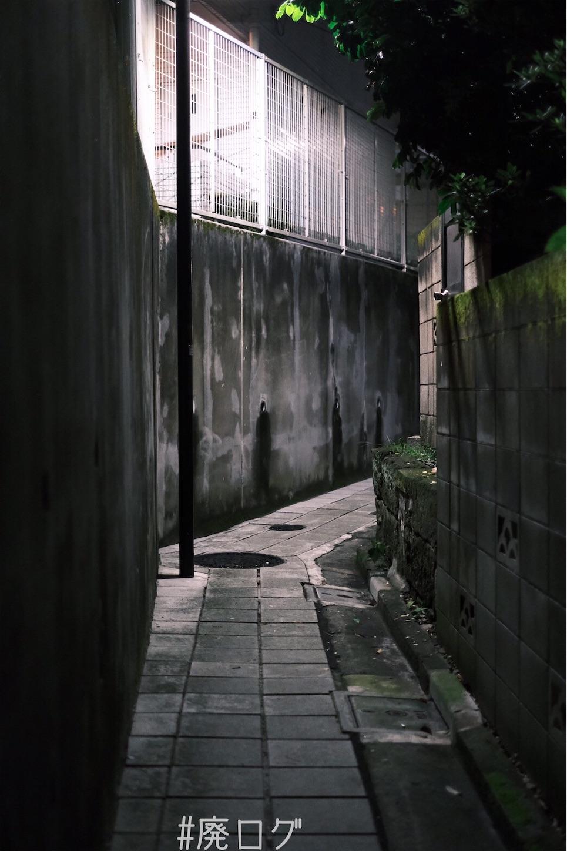 f:id:hiyapa:20210710105248j:image