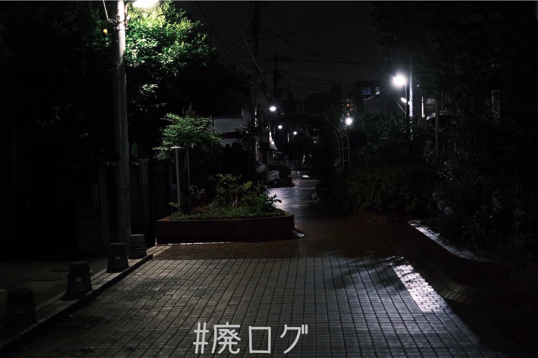 f:id:hiyapa:20210711124353j:image