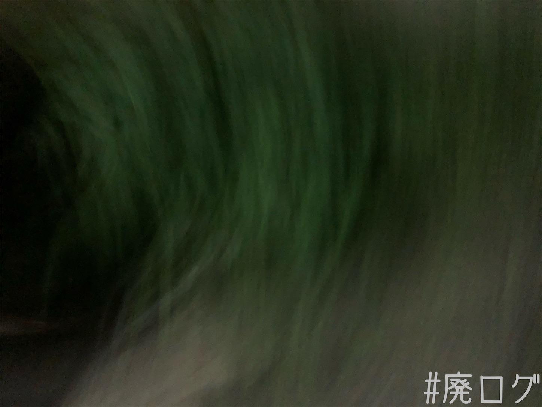 f:id:hiyapa:20210813215631j:image