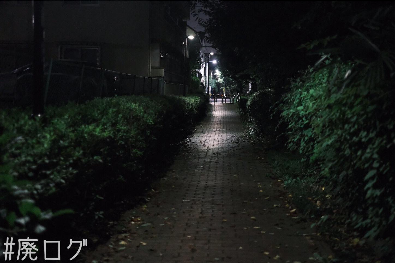 f:id:hiyapa:20210815173645j:image