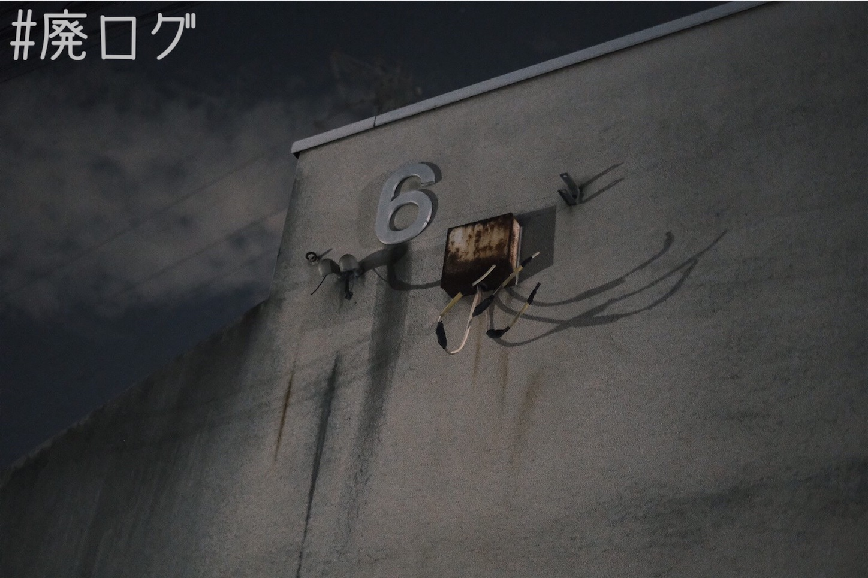 f:id:hiyapa:20210815190318j:image
