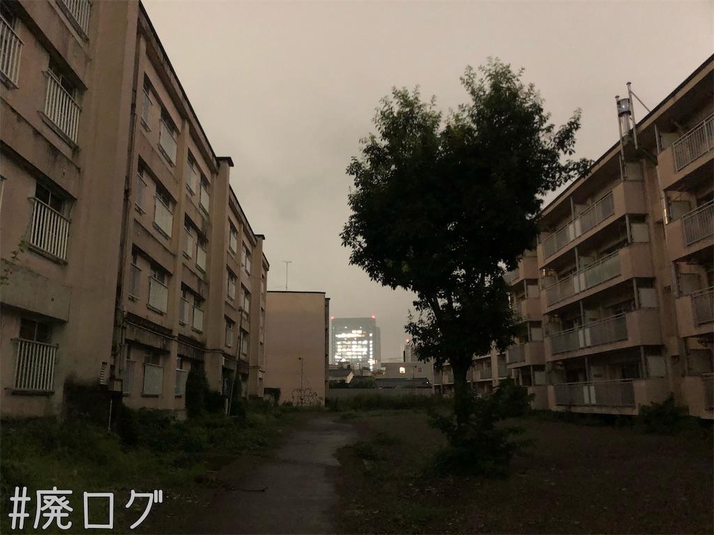 f:id:hiyapa:20210911220341j:image