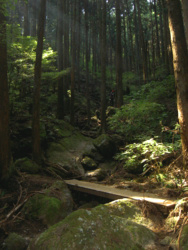 f:id:hiyohiyodori:20111009125833j:image