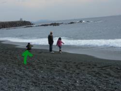 f:id:hiyohiyodori:20120102133506j:image