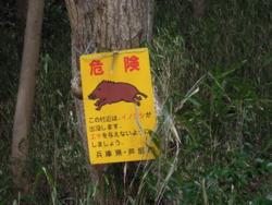 f:id:hiyohiyodori:20120326103354j:image