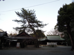 f:id:hiyohiyodori:20120327174938j:image
