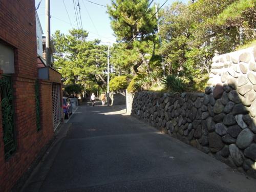 f:id:hiyohiyodori:20121104111907j:image