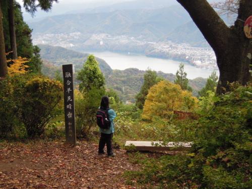 f:id:hiyohiyodori:20121111101322j:image