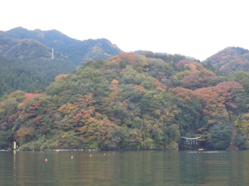 f:id:hiyohiyodori:20121111132926j:image