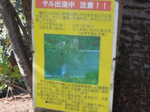 f:id:hiyohiyodori:20121114095812j:image
