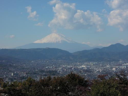f:id:hiyohiyodori:20121114113428j:image