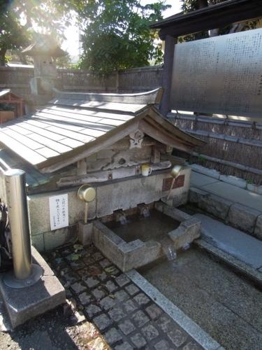 f:id:hiyohiyodori:20121114123212j:image