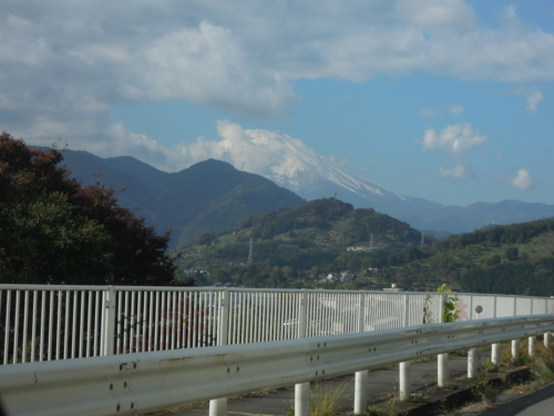 f:id:hiyohiyodori:20121118114145j:image