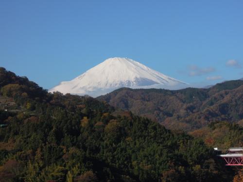 f:id:hiyohiyodori:20121125095504j:image