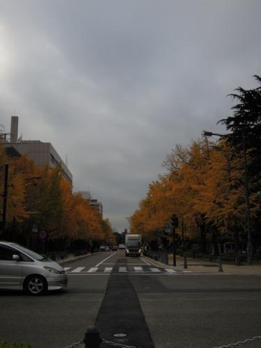 f:id:hiyohiyodori:20121128104727j:image