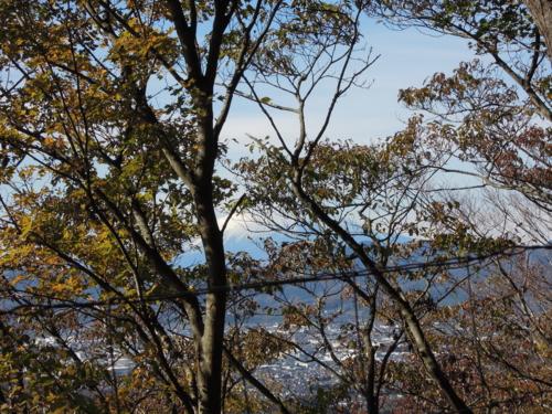 f:id:hiyohiyodori:20121205113140j:image