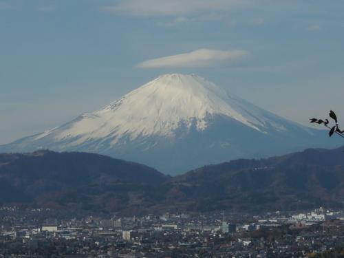 f:id:hiyohiyodori:20121205120016j:image