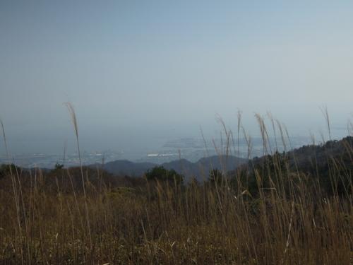 f:id:hiyohiyodori:20130330132352j:image