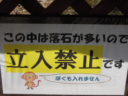 f:id:hiyohiyodori:20130401103845j:image