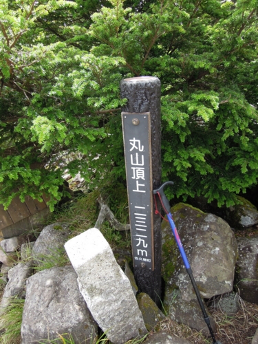 f:id:hiyohiyodori:20130826114324j:image