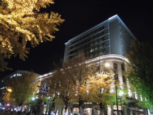 f:id:hiyohiyodori:20131201191939j:image
