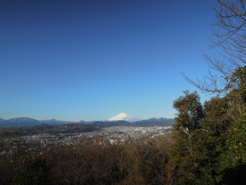 f:id:hiyohiyodori:20140111090223j:image