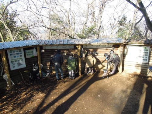 f:id:hiyohiyodori:20140111091011j:image