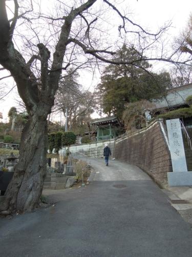 f:id:hiyohiyodori:20140113162243j:image