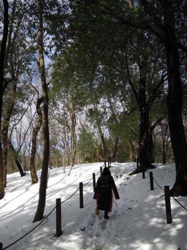 f:id:hiyohiyodori:20140209120433j:image