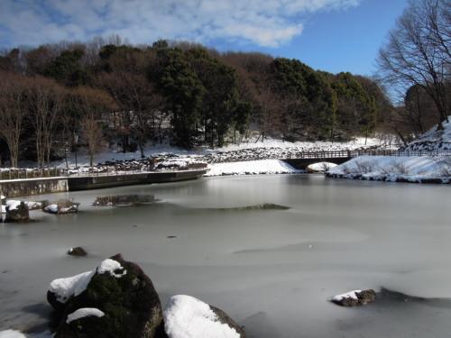 f:id:hiyohiyodori:20140209122111j:image