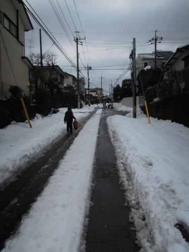f:id:hiyohiyodori:20140215135446j:image