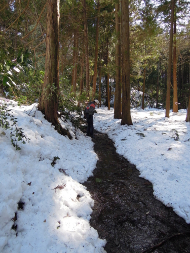 f:id:hiyohiyodori:20140216131452j:image