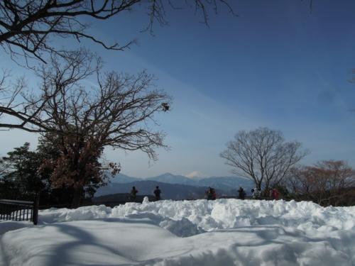 f:id:hiyohiyodori:20140217112252j:image