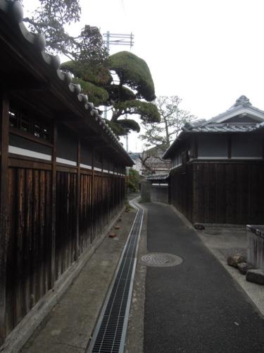 f:id:hiyohiyodori:20141231155904j:image
