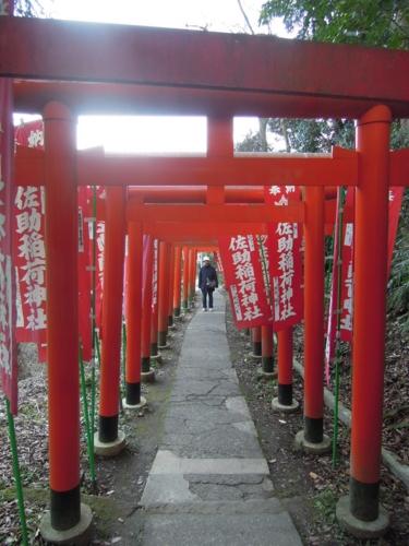 f:id:hiyohiyodori:20150111160126j:image