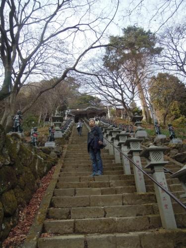 f:id:hiyohiyodori:20150125133643j:image